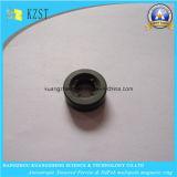 亜鉄酸塩の磁石の放射状の磁化のMultipoleリング