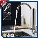 Faucet раковины кухни выхода фильтра нержавеющей стали (30491)