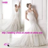 Reizvolles Nixe-Spitze-Schatz-Hochzeits-Kleid mit geöffnetem zurück