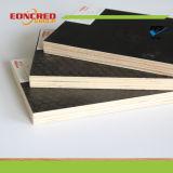 La película impermeable hizo frente a la madera contrachapada/a la madera contrachapada marina