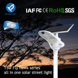 IP65 alta calidad LED lámpara solar integrado para la calle Camino