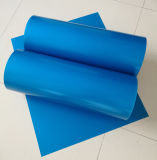 Placa Ctcp de rosto azul