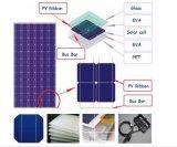 Poli comitato solare laminato vetro 5W