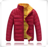 A roupa elegante, venda por atacado desgasta para baixo o revestimento do revestimento para baixo