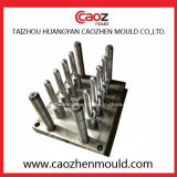 Heißes Selling Plastic Pet Preform Mould in China