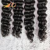 ペルーのバージンの毛の拡張深い波のRemyの人間の毛髪の編むこと