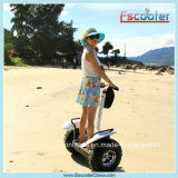 2014 Self Balancing Electric Unicycle Scooter Two Wheel Scooter 노르웨이 최신과 Fashionable