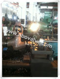 Bw Forged Globe Valve (80mm) di Indonisa Market
