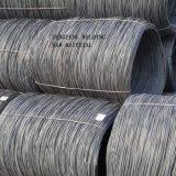 Meilleur Manufacturer de Welding Electrode