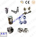 Fabbrica di tornitura delle parti personalizzata CNC dell'acciaio inossidabile/metallo della lega di alluminio