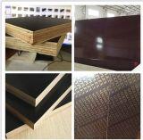 중동 Market를 위한 핑거 Jointed Core 브라운과 Black Film Faced Plywood