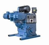 Pompe de vide industrielle de température élevée de piston rotatoire de déplacement