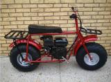 """bici della sporcizia del gas dei 19 """" freni a tamburo 196cc mini con EPA e Ce"""
