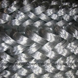エレクトロおよびHot Galvanized WireまたはElectro Soft Binding Wire (ISO9001)