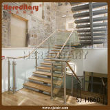 階段柵デザイン(SJ-X1081)のための優雅な屋内まっすぐなステアケース
