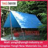 Feuille en plastique imperméable à l'eau de bâche de protection de bonne qualité/bâche de protection tissée de PE de tissu