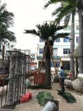 Grande palmeira artificial plástica decorativa ao ar livre da tâmara