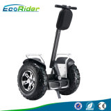 Individu d'Ecorider équilibrant le scooter électrique 4000watt outre du scooter de route