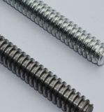Kohlenstoffstahl verlegter Rod, DIN975, DIN976