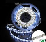 Luz de la tira LED de 5050 SMD