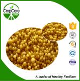 Fabricante soluble en agua del fertilizante 20-20-20 de NPK