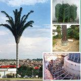 Tour de télécommunication d'arbre camouflée par tube en acier