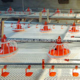 Alta qualità Automatic Poultry Feeding e Nipple Drinking System per Chicken