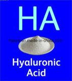 Het Voedsel van uitstekende kwaliteit/het Kosmetisch Hyaluronic Zuur van de Rang/Natrium Hyaluronate