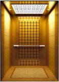 ドイツの専門のVvvfは起点に運転する別荘のエレベーター(RLS-221)を