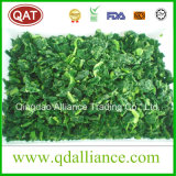 IQF Frozen Chopped Spinach with Kosher Certificate