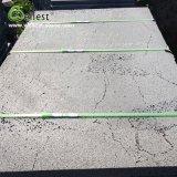 pavimento non tappezzato di pietra naturale 600X600 che pavimenta le mattonelle decorative della parete delle mattonelle