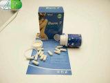 Ustione di erbe all'ingrosso 7 pillole di perdita di peso