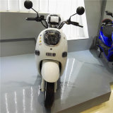 e-Motorcycle/E-Autoped 60V-20ah-800W