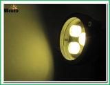 Projecteur extérieur 3W de jardin de DEL avec la transitoire pour l'horizontal et la lampe de pelouse