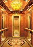 Good Quality Competitive Price를 가진 호화스러운 Passenger Elevator