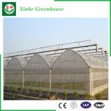 농업 플랜트를 위한 다중 경간 필름 온실