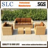 セットされる屋外のソファーの一定のソファー/家具のソファー(SC-B9508-H)