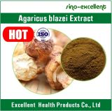 Poudre d'extrait de champignon de couche de Blazei d'agaricus