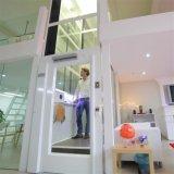 Lift van het Huis van het Huis van de Villa van de Familie van de Fabriek van Deeoo de Gelukkige