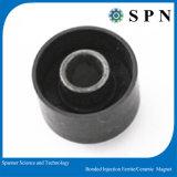 Kundenspezifischer Einspritzung-Ferrit-Magnet für Motor