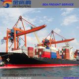 Service de logistique/fret d'expédition/commissionnaire de transport promotionnels vers le Mexique