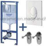 Керамический Стен-Повиснутый туалет Washdown квадрата шара туалета (ML-503)