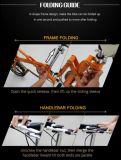 Bicicleta plegable de la batería de litio/bici eléctrica de la ciudad/bicicleta plegable del acero de carbón de la aleación de aluminio