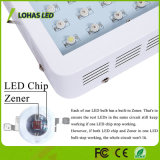 Hoher Ertrag-volles Spektrum LED wachsen helles 300W 600W 900W 1000W für Innenpflanzen