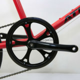 Alta qualidade bicicleta de /Shimano Altus da bicicleta de 20 polegadas mini (MINI VELO1)