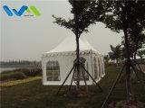 [3إكس3م] مصغّرة [بغدا] خيمة لأنّ بالجملة