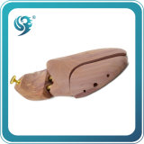 عطريّة حذاء شجرة أرض مصنع بائعة
