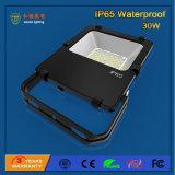 Proiettore esterno di IP65 SMD 3030 30W LED per costruzione