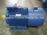 Yvf2 시리즈 낮은 전압 변하기 쉬운 주파수 속도 조정가능한 VFD AC 모터