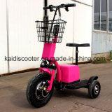 [س] 3 عجلات كهربائيّة درّاجة ناريّة حركيّة زار معلما سياحيّا عربة [500و] [روأدبت] زنجبيل